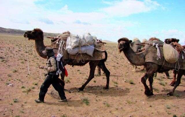 girl in desert, journey