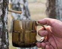 Health Trend: Birch sap
