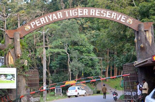 Periyar Tiger Reserve: Call of the wild