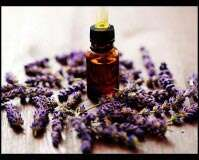 Lavender benefits you should be aware about