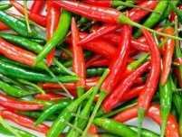 Ginger-chilli reduces cancer risk