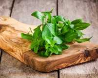 5 things you didn't know about basil