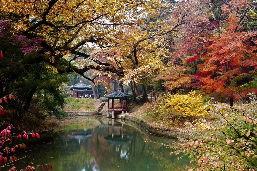 Best Places Visit And Things To Do In South Korea Femina In