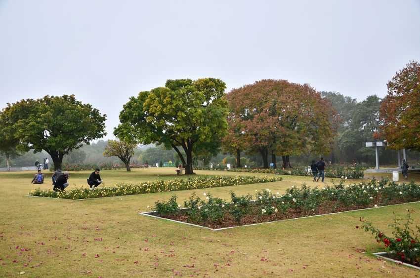 Chandigarh-Rose-Garden
