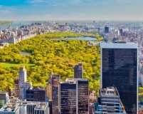 The five best walks in New York City