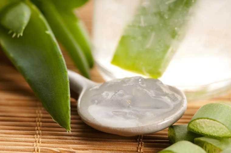aloe vera gel for skin ageing