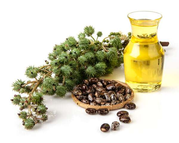 How castor oil can benefit your skin and hair