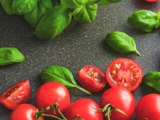 Summer special: how to grow tomatoes at home?