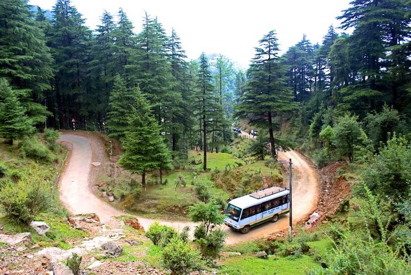 Palampur-Himachal Pradesh