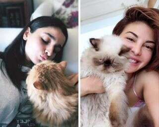 Bollywood celebs with pet cats