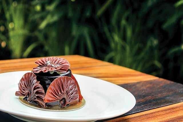 Chocolate Feuillant