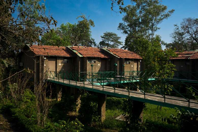 White Tiger Forest Lodge.jpg
