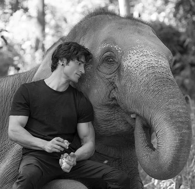Vidyut Jammwal befriends elephants