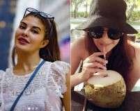 World Vegan Day: Bollywood celebs who turned vegan