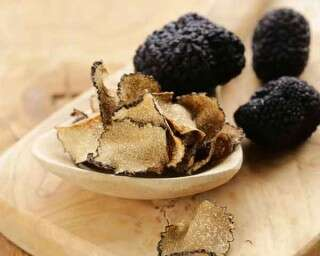 Health benefits of truffle mushrooms