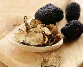 Health benefits of truffle mushrooms