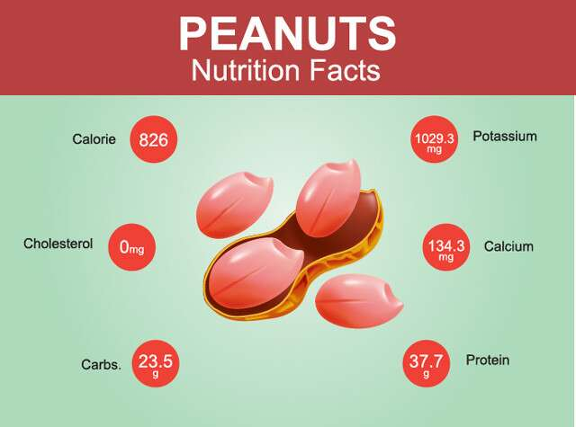 Peanut Nutrition Facts Infographics