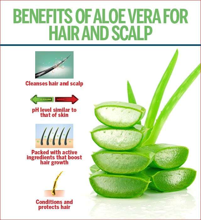 Effective Tips on Using Aloe Vera for Hair Growth | Femina.in