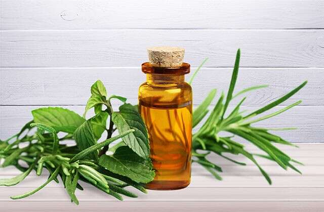 Easy Home Remedy Teat Tree Oil