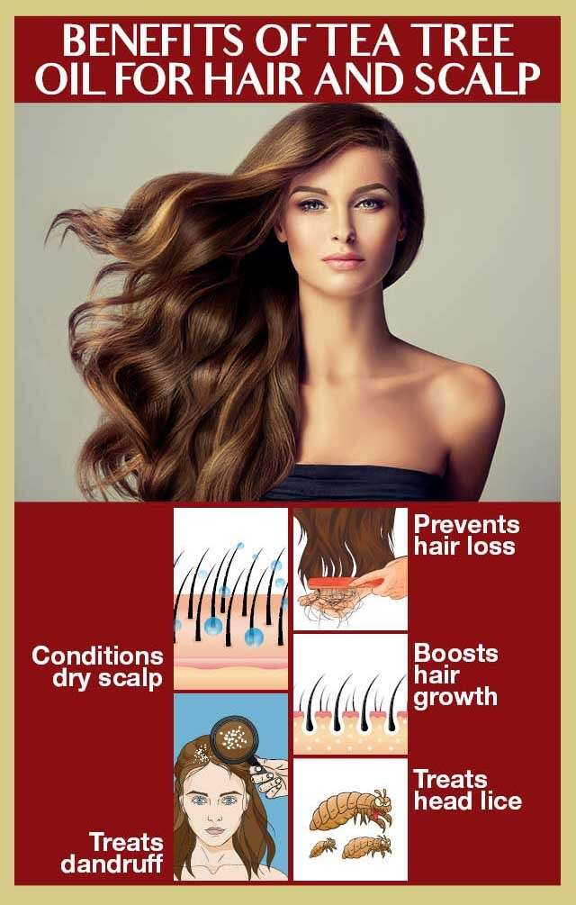Benefits And Uses Of Tea Tree Oil For Hair Femina In