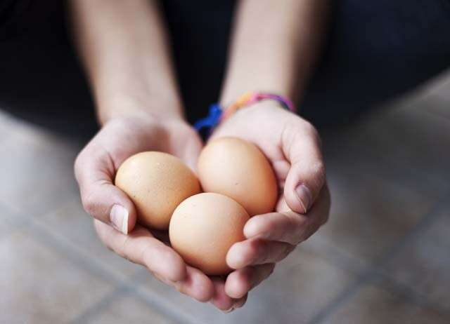 Benefits of Eggs for Hair to Adds Lustre to your mane