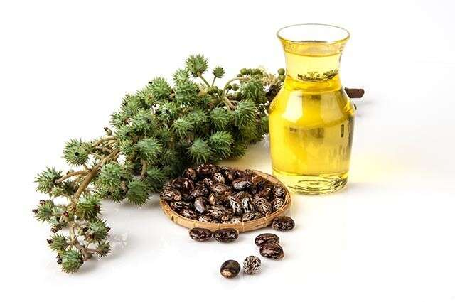 12 Best Oils For Hair Growth & Thickness | Femina in