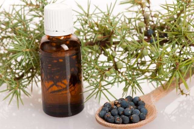 Home Remedies for Hair Growth with Juniper
