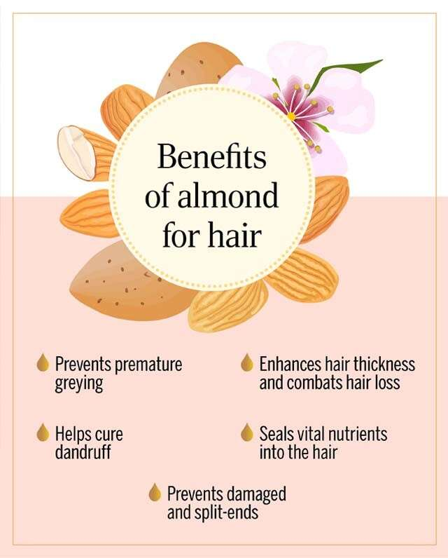The Health Benefits of Almonds for Hair