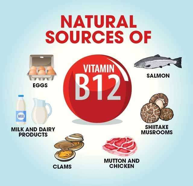 10 Top Vitamin B12 Rich Foods Their Benefits Femina In