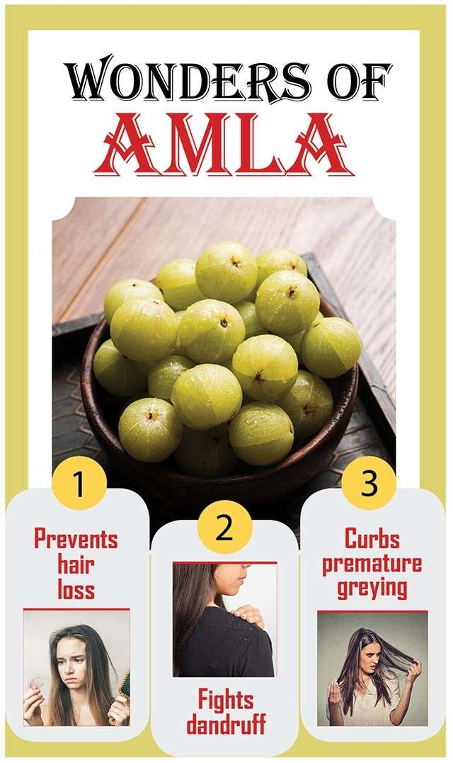 Benefits Of Amla For Hair Growth Femina In