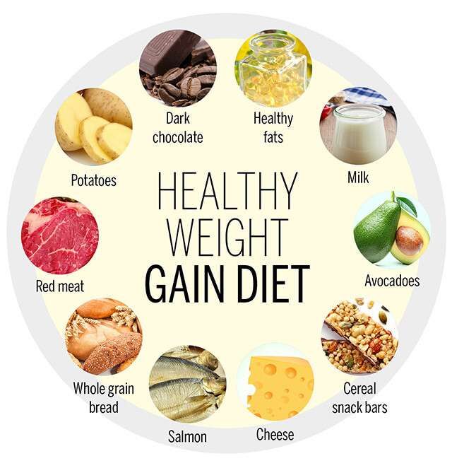 Healthy weight gain diet infographic