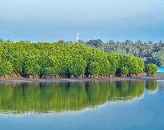 Exploring India: 5 Places To Visit Around Kannur, Kerala