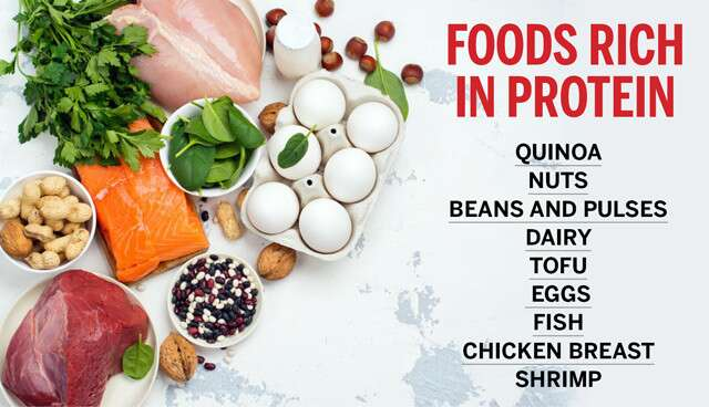 Top Protein-Rich Foods Infographic