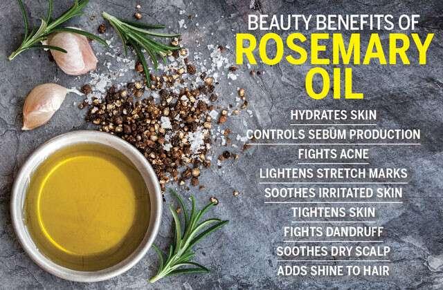 Beauty Benefits Of Rosemary Oil Femina In