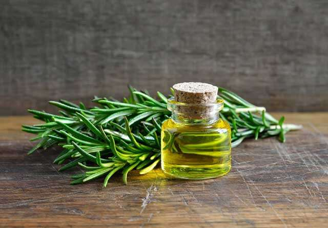 Nutritional Value Of Rosemary Oil