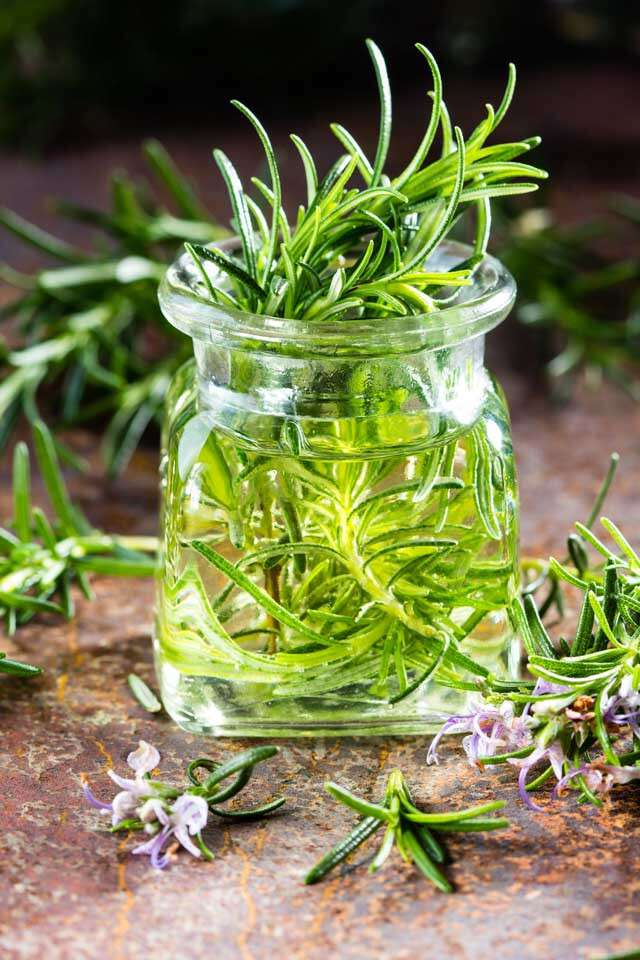 Points To Remember Before Using Rosemary Oil