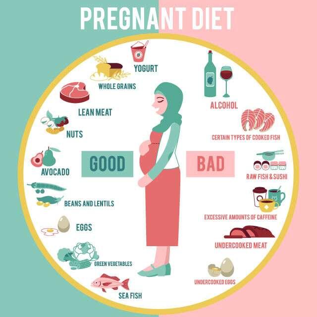 Expert Approved Pregnancy Diet Chart Femina In