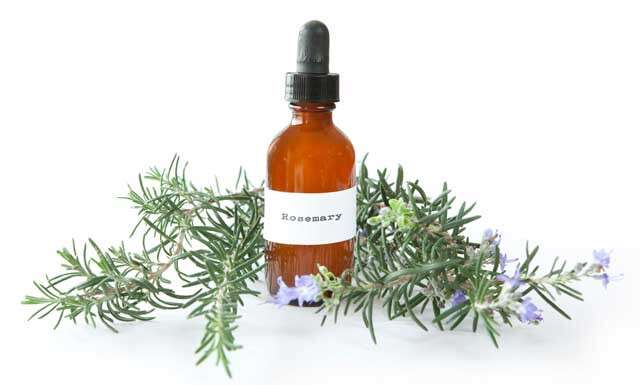 Rosemary Oil Uses