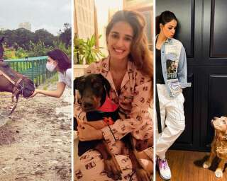 5 B-Town Celebs Who Love Animals And Make A Difference