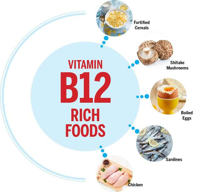 Vitamin B12 Rich Foods Infographic