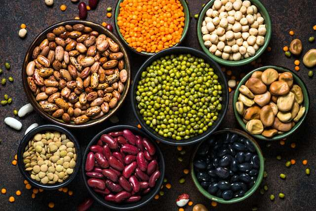 Legumes is Common Sources Of Vitamin C And Folic