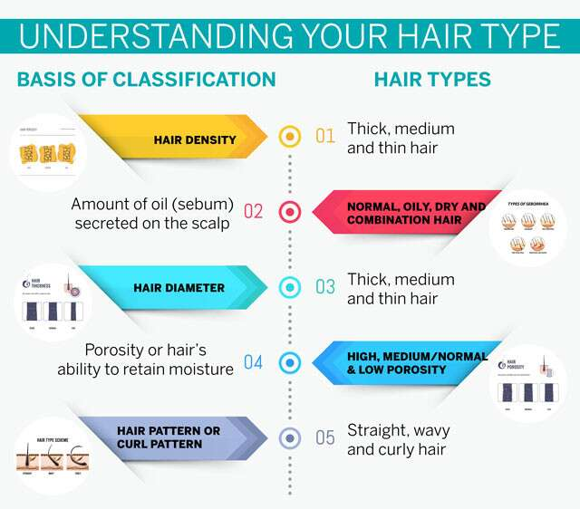 Understanding Your Hair Type Infographic