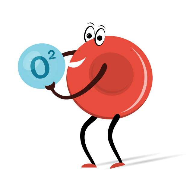 What Are Blood Oxygen Levels?