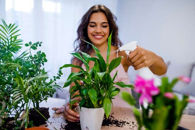 The Perfect House Plant For Your Zodiac Sign