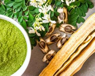 Start Your Mornings With Moringa To Boost Immunity