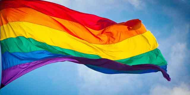 Why LGBT flag is multi-colour?