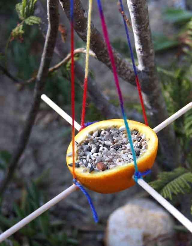 DIY: orange bird feeder