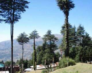 कश्मीर में कहां जाएं और क्या देखें?
