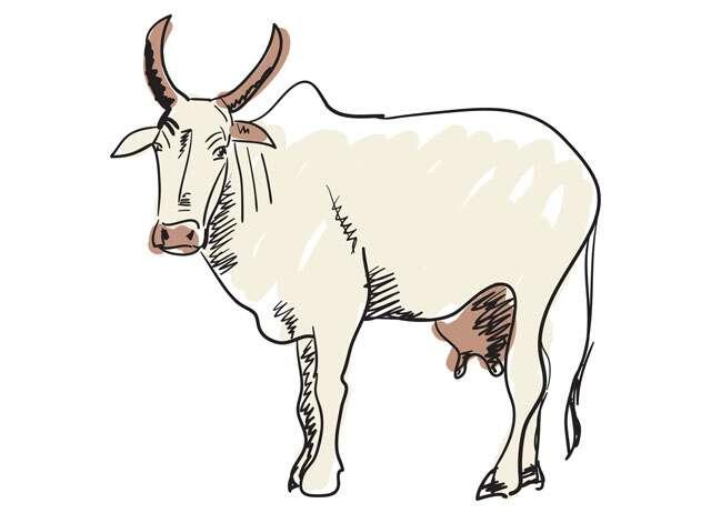 Harishankar Parsai's satire Ek Gaubhakt se bhent