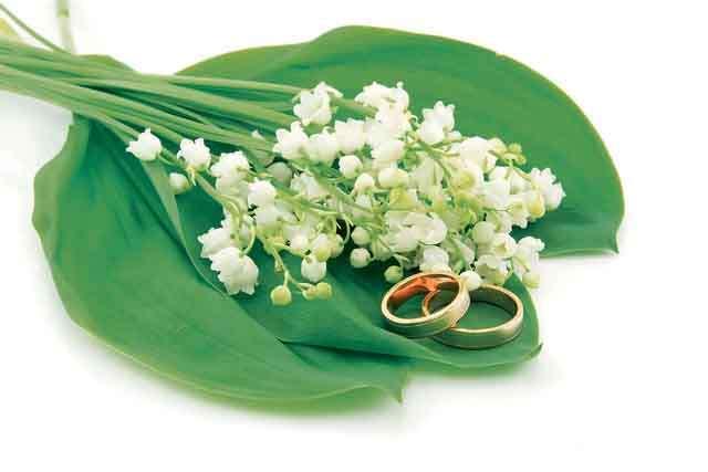 Career options in Wedding industry